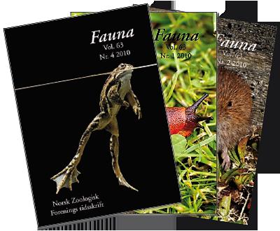 Fauna-forsider